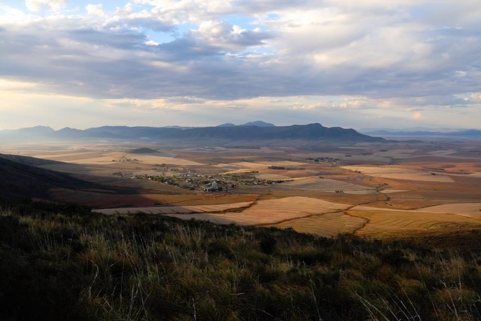 Wildehurst Wines Koringberg Swartland
