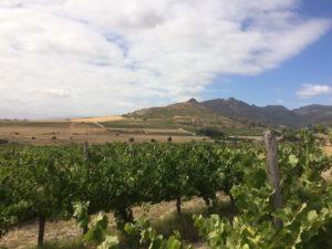 The Paardeberg beauty